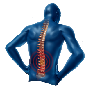 back-pain-png-human-dummy